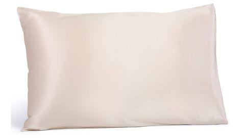 Fishers Finery Pure Silk Pillowcase