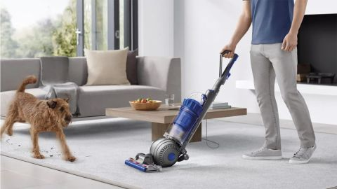 Dyson Ball Animal 2 Total Clean Upright Vacuum Cleaner