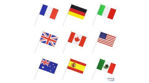 50 Countries International World Stick Flag