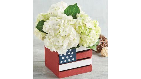 White Hydrangea in American Flag Crate