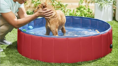 Frisco Large Outdoor Dog Swimming Pool, Red