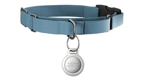 Pet Tag for AirTag