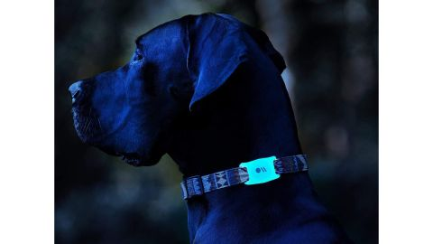 AirTag Case for Dog Collars