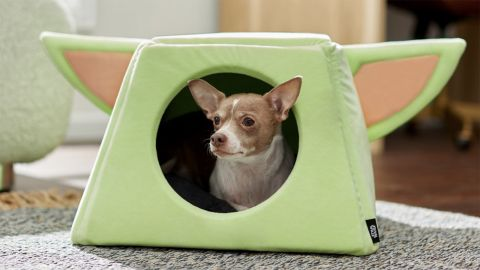 'Star Wars: The Mandalorian' The Child Covered Cat & Dog Bed