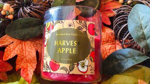 Opalhouse 15.1-Ounce Lidded Glass Jar 2-Wick Harvest Apple Candle