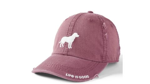 Dog Silhouette Sunwashed Chill Cap
