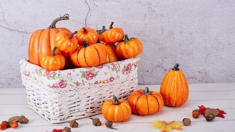 Artificial Orange Pumpkins