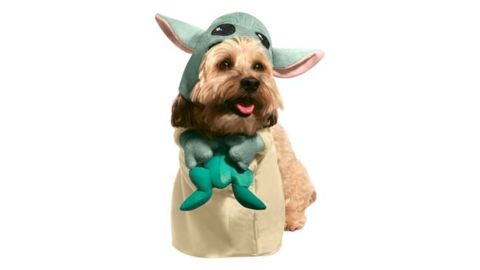 The Child with Frog Star Wars: The Mandalorian Pet Costume