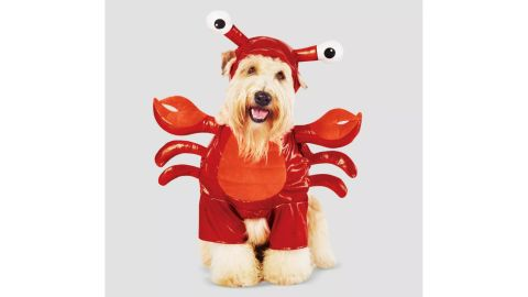 Lobster Frontal Dog and Cat Costume