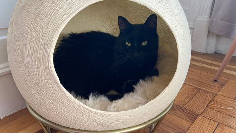 Tuft + Paw Stellar Cat Bed