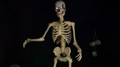 Seasonal Visions 8-Foot Towering Skeleton