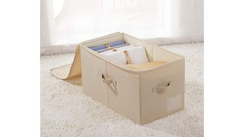 iwill Create Pro Large Closet Storage Box with Lid